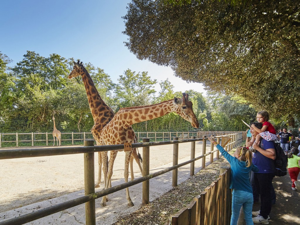 Zoo Les Sables d'Olonne - Photo A. Lamoureux-Vendee Expansion